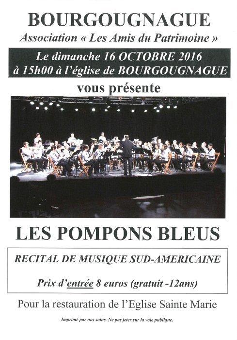 pompon_bleus_03